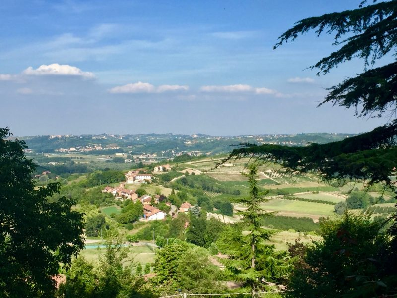 Best Bottles: A Selection of Reds From Piedmont, Italy